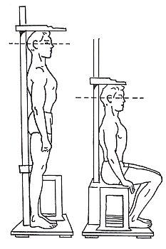 Схема измерение роста
