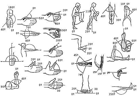 Объем движений в суставах боль в плечевых суставах хожу в зал